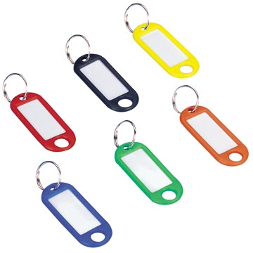 Wedo sleutelhangers met ring, geassorteerde kleuren, pak van 100 stuks