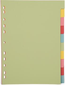 Pergamy tabbladen ft A4, 11-gaatsperforatie, karton, geassorteerde pastelkleuren, 10 tabs